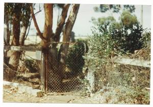 Hunter gate big